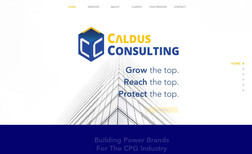 Caldus Consulting Building Power Brands For The CPG Industry.